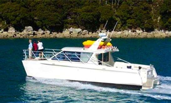 Catamaran Rental In Motueka