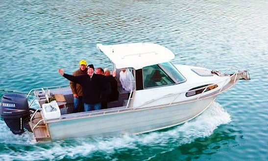 20' Fyran 580 Fishing Charter In Waiheke