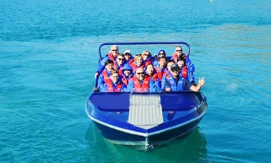 Jet Boat Tour In Glenorchy