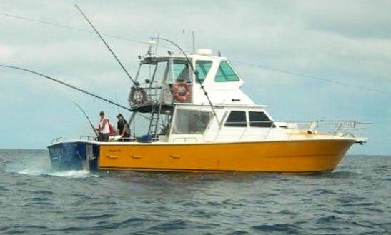 Sport Fishing Charter In Bermagui