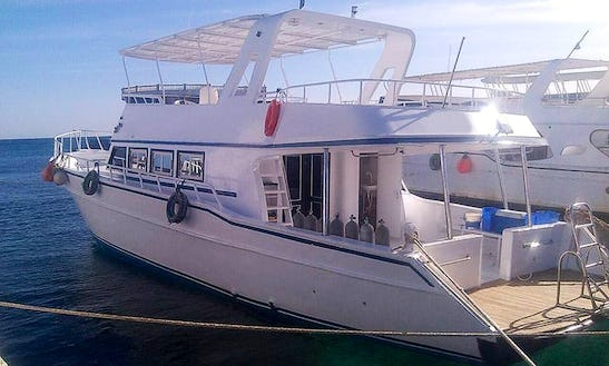 Cruise In The Red Sea Governorate, Egypt On A Motor Yacht