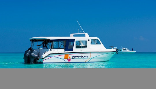 Enjoy Whale Watching Tour In Malé, Maldives On Cuddy Cabin