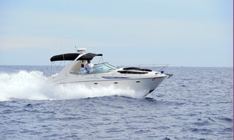 Book this Amazing Bayliner Motor Yacht in Cabo San Lucas, Mexico