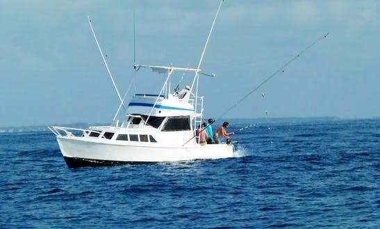 Malindi Fishing Charter On 37ft