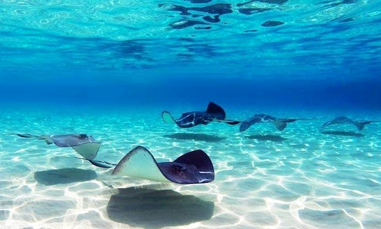 Guadalupe, Carribean Islands...sail With Us!