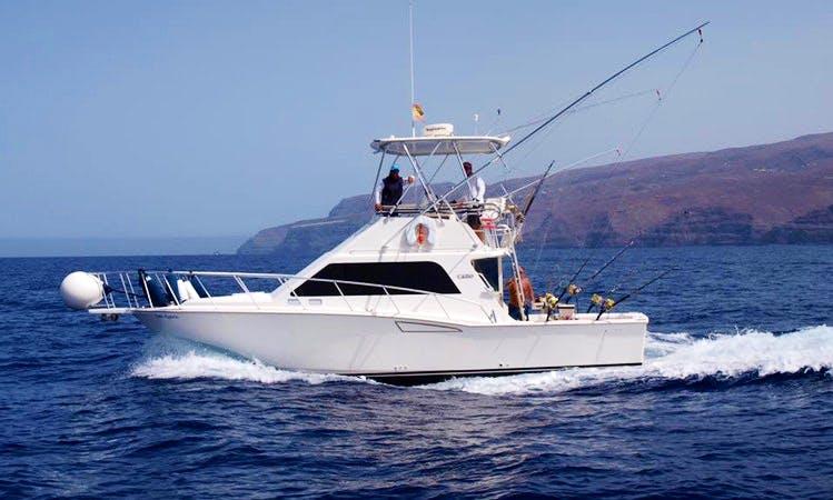 Enjoy Fishing in San Sebastián de La Gomera, Spain on 35' Cabot Sport Fisherman