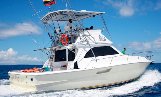 Enjoy Fishing  And Snorkeling In Galapagos, In The Best Yatch Niña Bella