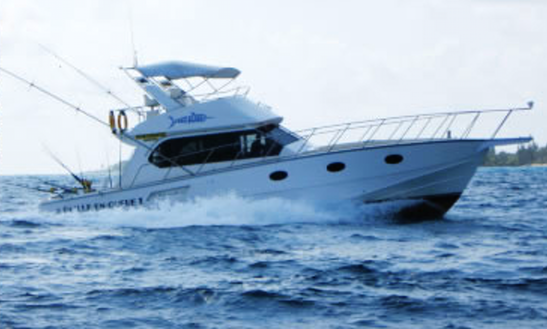 Enjoy Fishing In Grand Baie, Mauritius On 34' Sport Fisherman