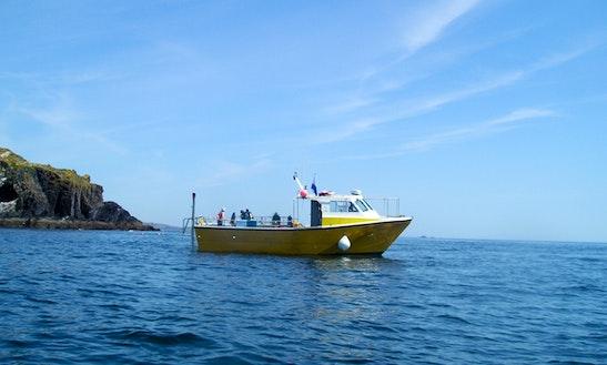Hardboat Fishing Charters In Baltimore, West Cork, Ireland
