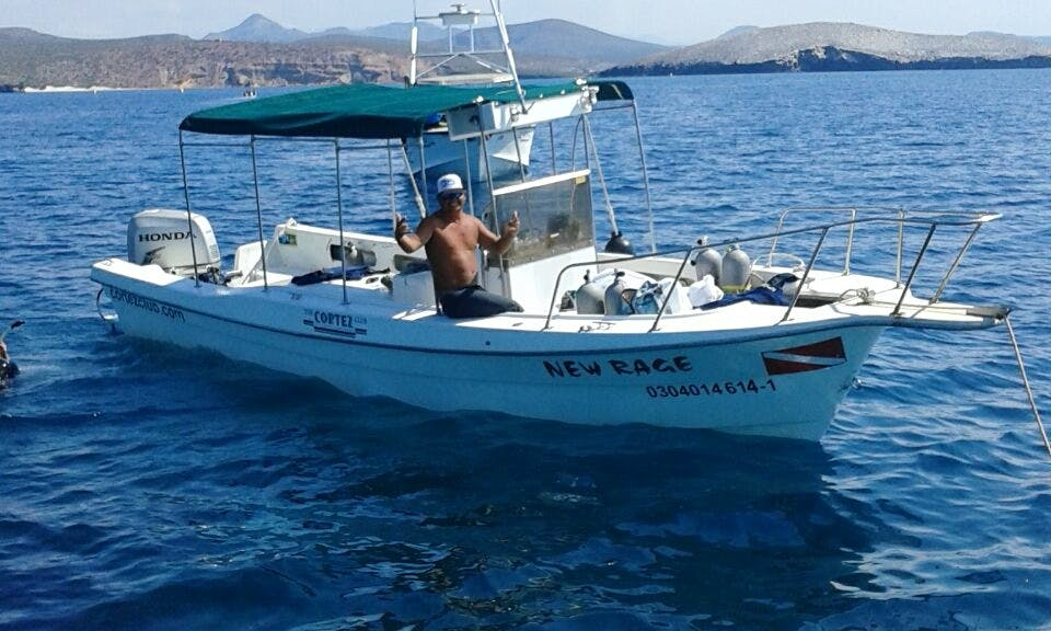 Whale Watching Adventure for 10 People in Baja California Sur, Mexico