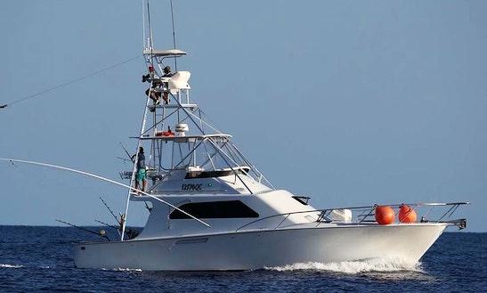 Enjoy Fishing In Townsville City, Australia On 45' Kaima Sport Fisherman