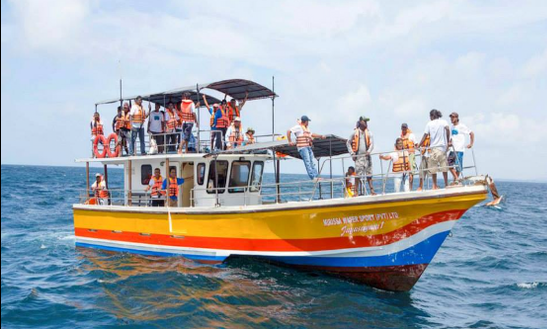 Departs From Mirissa - Daily Boat Tours!