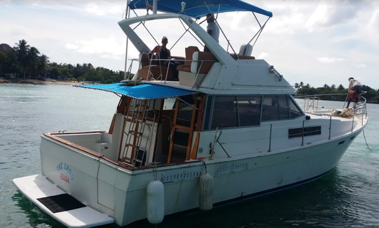 Enjoy Fishing In La Romana, Dominican Republic On Bayliner Sport Fisherman