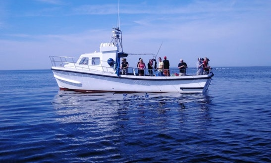Fishing Trip For Half And Full Day In Gothenburg