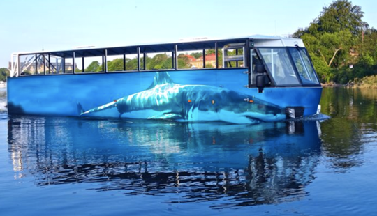 Amphibious Bus Tours In Stockholm