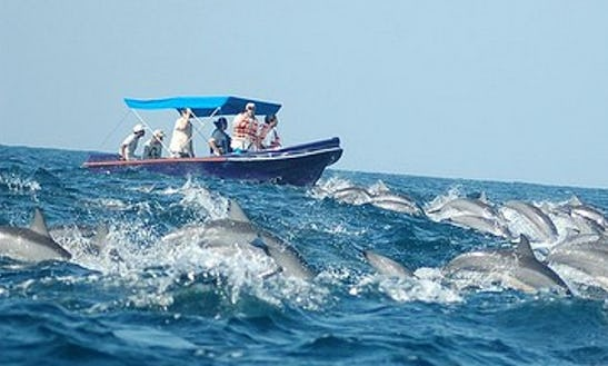 Rent A Dinghy In Ilanthadiya, Sri Lanka For Up To 6 Person