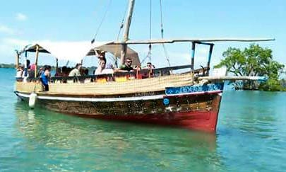 Tour by Traditional Boat Charter in Wasini, Kenya