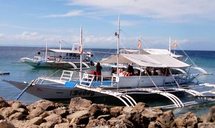 Dive and Snorkel Boat Tour in Cordova, Philippines!