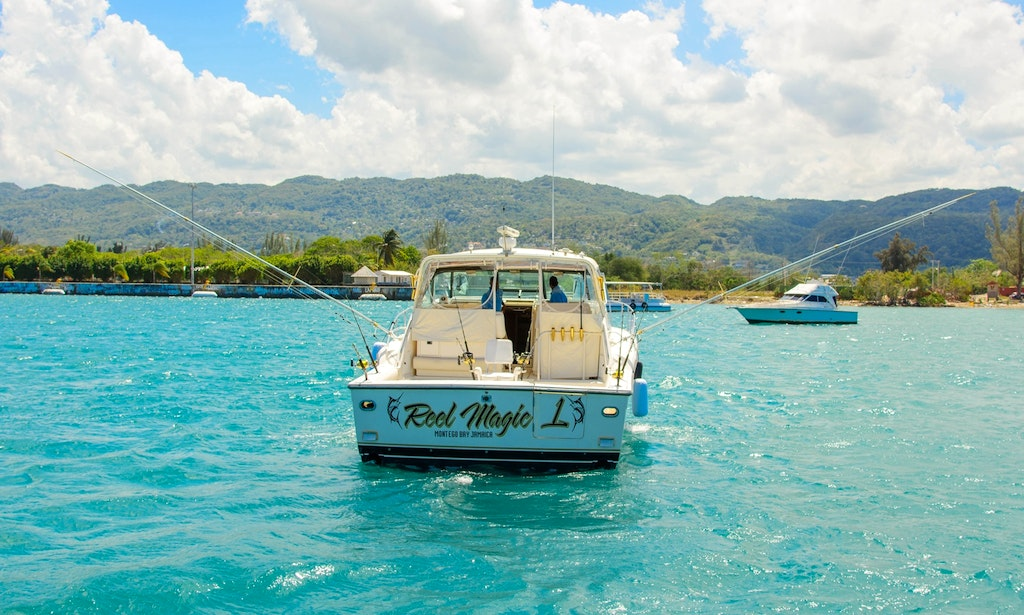 Enjoy fishing in montego bay jamaica on a motor yacht for Jamaica fishing charters