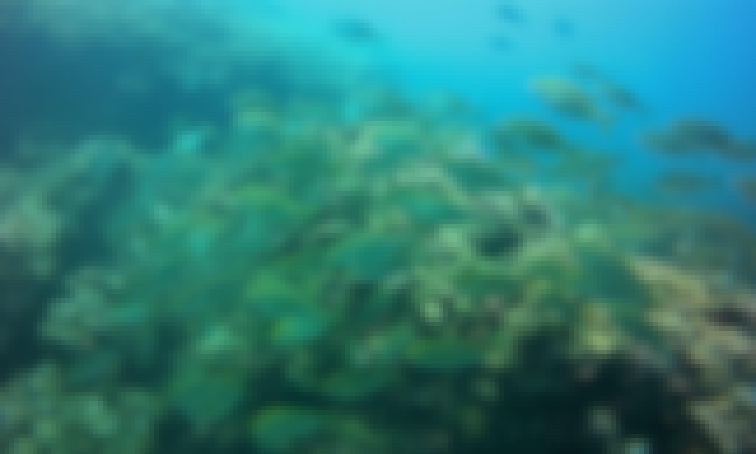 Snorkeling in Santa Pola