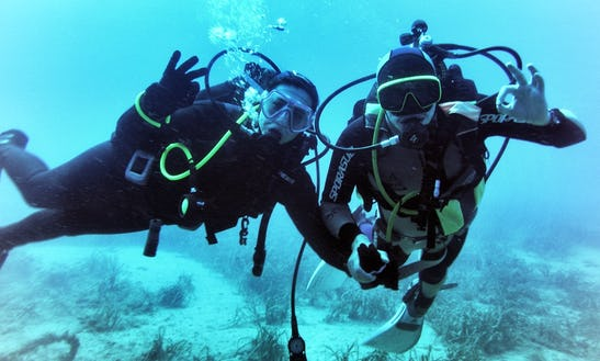 Discover Scuba Diving In Tabarca Island