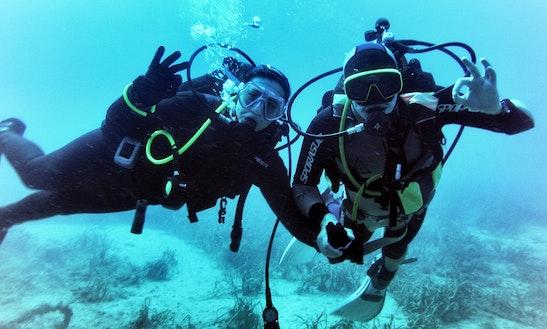 Discover Scuba Diving In Tabarca Island
