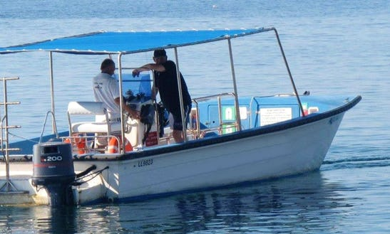 Diving Trips & Courses In Limassol