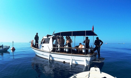 Diving Trips And Courses In Limassol