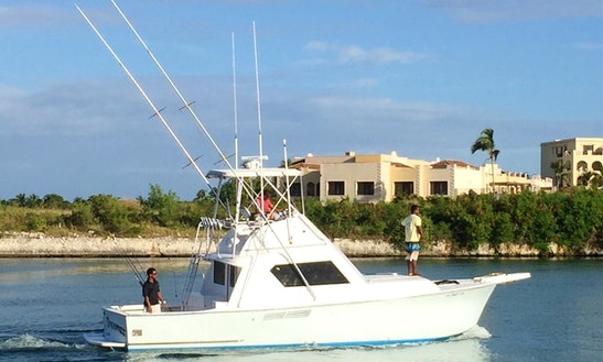 Professional Fishing In Punta Cana, Dominican Republic On 36' Hatteras Island Dreamzz Sport Fisherman