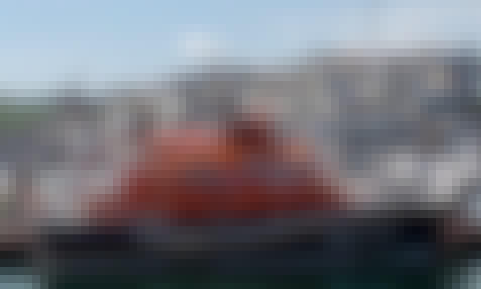 Fantastic 2-Hour Mackerel Fishing Boat Trips In Torbay