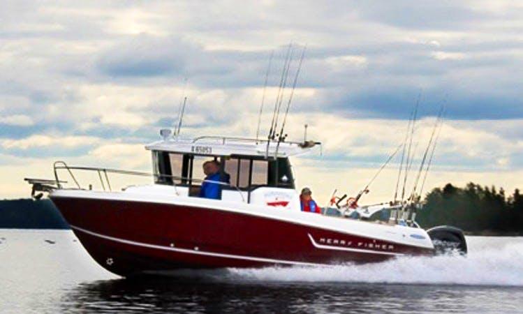 Enjoy Fishing in Savonlinna, Finland on Merry Fisher Marlin 755 Cuddy Cabin