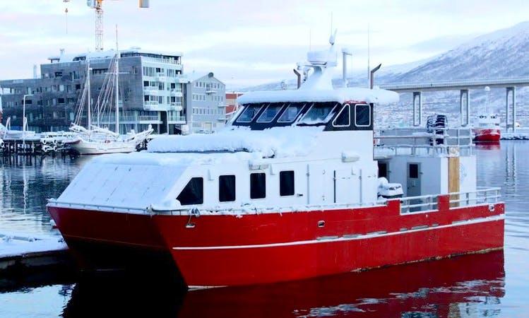 Deep Sea Fishing Charter in Sørøya, Norway