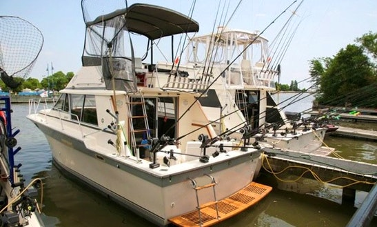 34′ Silverton Sportfish Flybridge Fishing Trip Charter In Mississauga