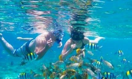 Enjoy Snorkeling in Kecamatan Gianyar, Indonesia