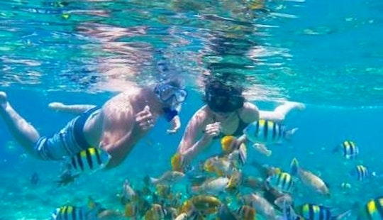 Enjoy Snorkeling In Kecamatan Gianyar, Indonesia