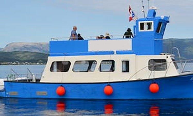 Passenger Boat Trips in Bonne Bay, Canada