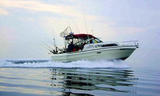 30' Sport Fisherman Charter In St Joseph, Michigan