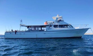 Swan River and Rottnest Cruises
