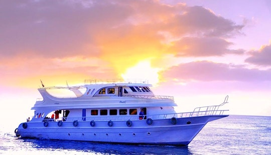 20 Person Luxurious Motor Yacht Charter In South Sinai, Egypt