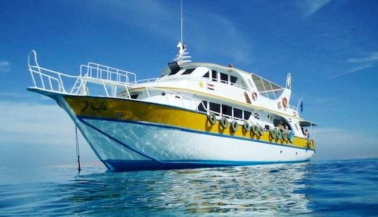 'aida Gamar' Yacht Diving Trips & Courses In Hurghada