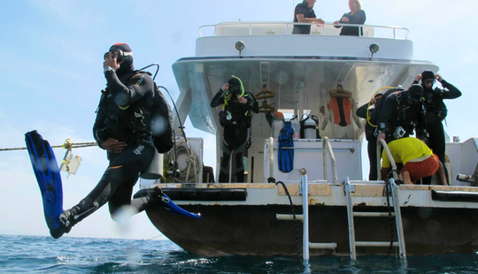 Daily Guided Dives To Dahab Dive Sites