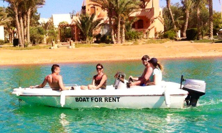 Cruise along the Red Sea onboard a Center Console boat!