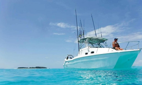 Fishing Charter On Zanzibar Island Aboard Twin-engine Power Cat