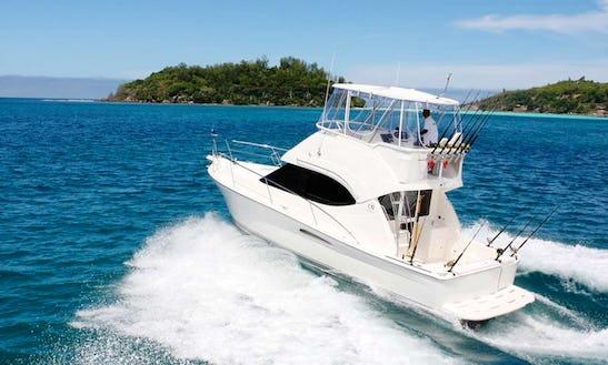 Fishign Charter On Blue Girl Charter In Seychelles