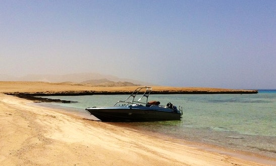 Charter A Center Console In South Sinai Governorate, Egypt