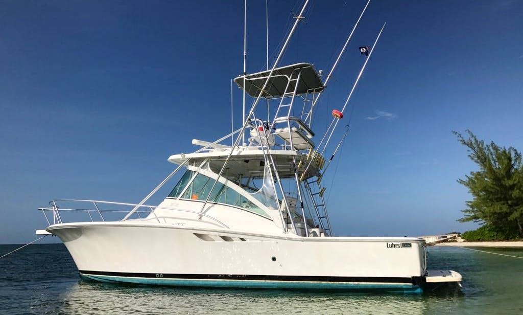 Private Charter to Stingray City, coral reef snorkeling, Starfish Point Beach