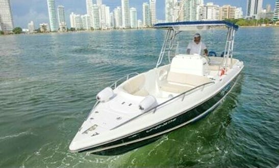 29' Cuddy Cabin Charter In Cartagena, Colombia