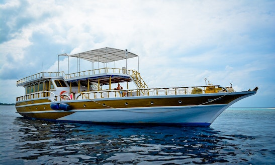 Fishing, Diving, Cruising, Surfing In Maldives