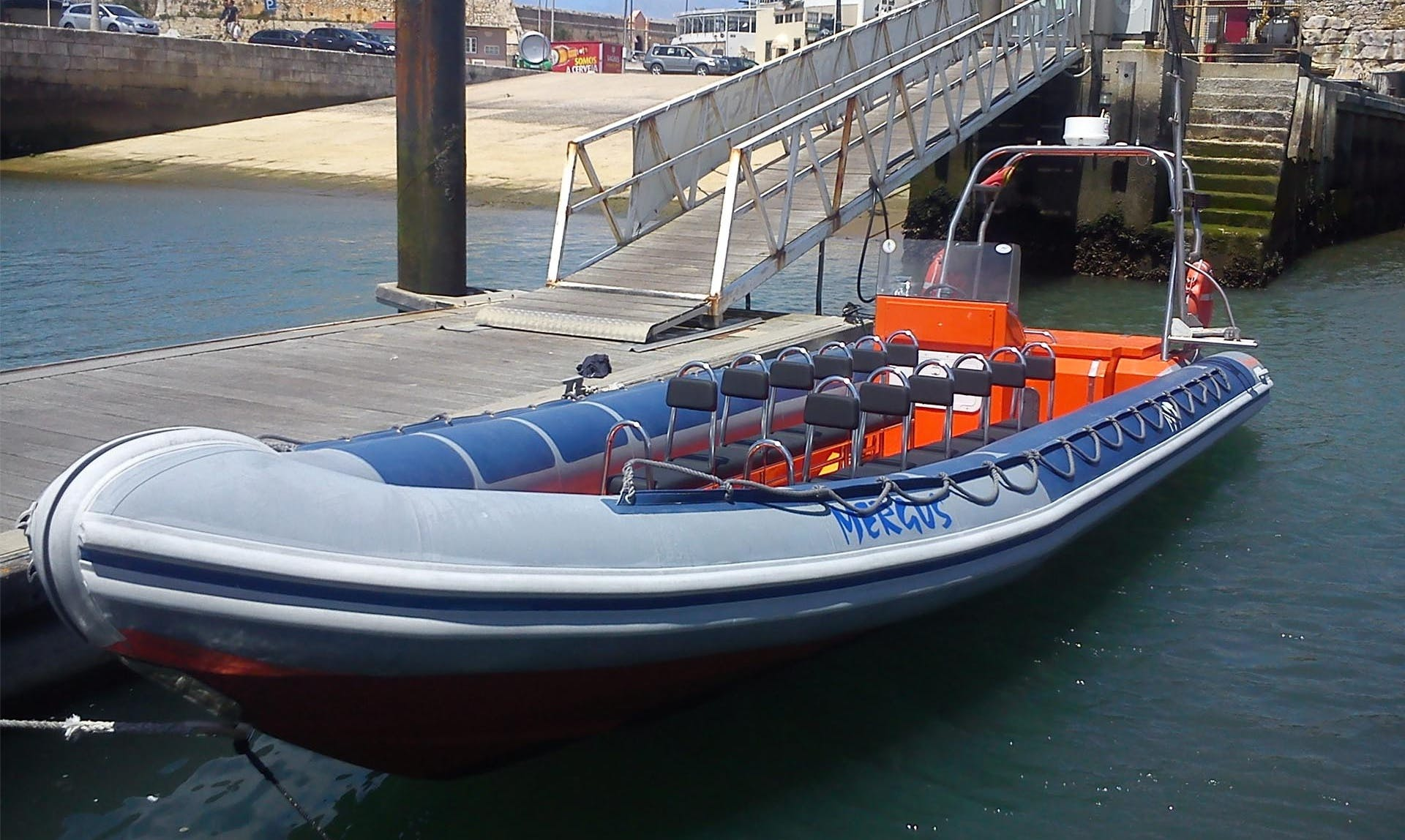 Charter 32' Mergus Rigid Inflatable Boat in Nazaré, Portugal