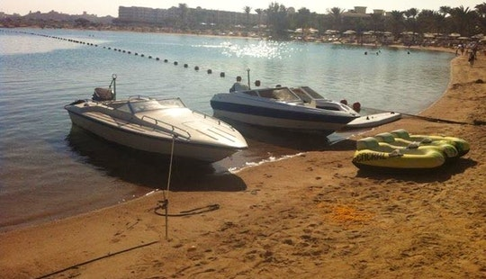 Charter A Cuddy Cabin In Red Sea Governorate, Egypt